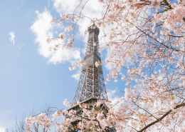 1 Eiffel Tower in Spring