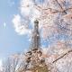 1 Eiffel Tower in Spring